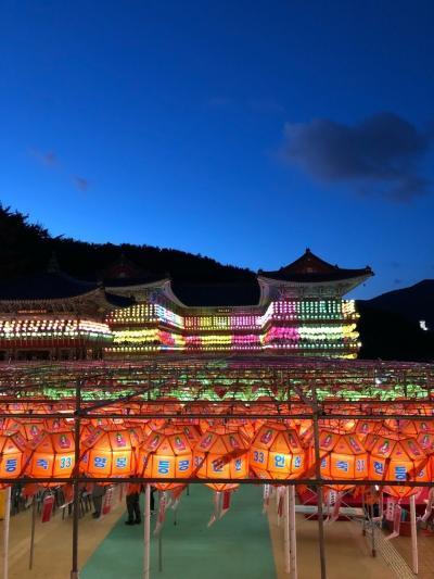 リベンジ釜山。三光寺の提灯祭行ってきました♪