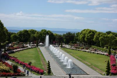 須磨離宮公園のバラをがっつりと鑑賞+撮影記。