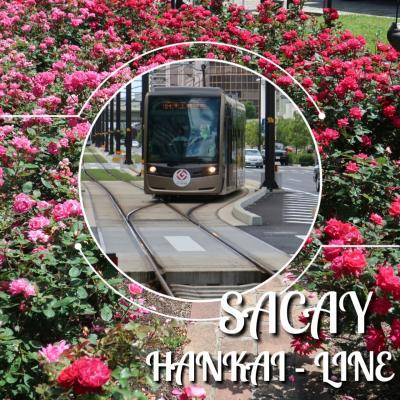 阪堺線で行く、堺・薔薇と利休と晶子を訪ねて 2018年 5月