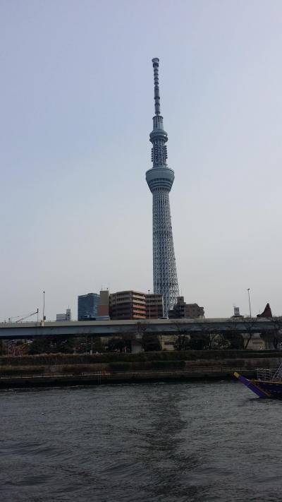 フォトジェニックな東京スカイツリーいろんな場所から撮ってみました