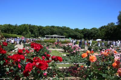 蕎麦とバラを楽しみに深大寺・神代植物公園へ