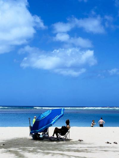 4トラ友達のマジュ~&こぶちゃんがハワイにやってきた~♪