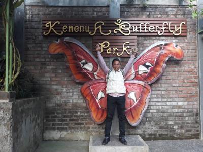 優雅な蝶々が舞う。バタフライパーク!