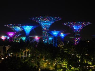 食とアートを楽しむシンガポール*個人手配