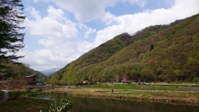 尾瀬檜枝岐温泉に行きました。(2018.05.4 旅館ひのえまた) part3