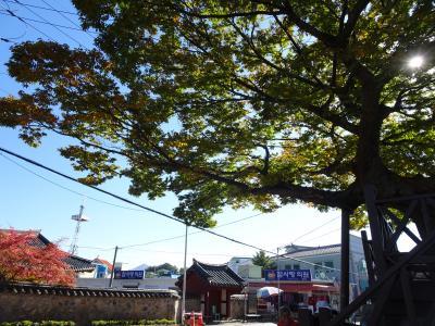 巨済島花の祭りと巨済面散策
