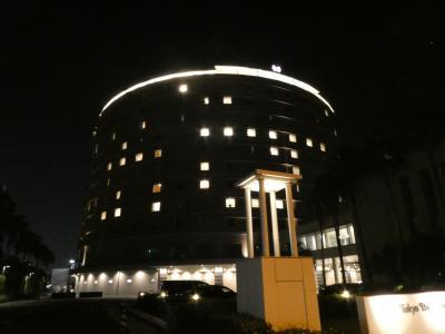 祝!ディズニーホテル3つ+東京ディズニーリゾート・オフィシャルホテル6つの全9ホテル宿泊達成!最後のひとつ初の東京ベイ舞浜ホテル宿泊記!