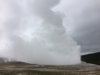 アメリカ国立公園巡りの旅 18日間6~7日目 イエローストーン前編