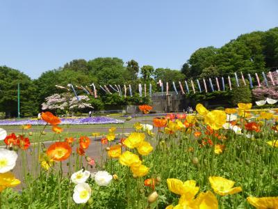 春の川口グリーンセンター♪ Vol.3