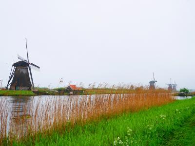 GW オランダ・ベルギー旅(5日目 キンデルダイク、デン・ハーグ、デルフト)