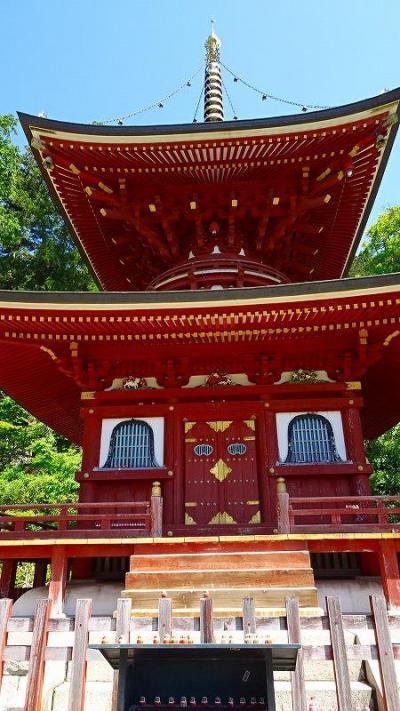 勝尾寺のシャクナゲはほぼ終わっていました 下巻。