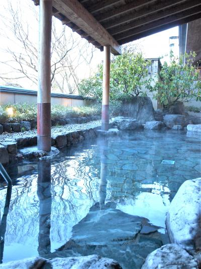 2018 福島 「 春競馬 」 & 「 飯坂温泉と花見山 」 の旅 < 福島県福島市 >