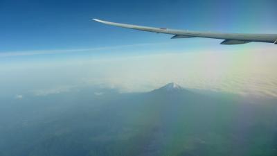 ANAの旅作利用で行く、東京2泊3日の旅【ANA265便(B787-9)に乗って帰福編】