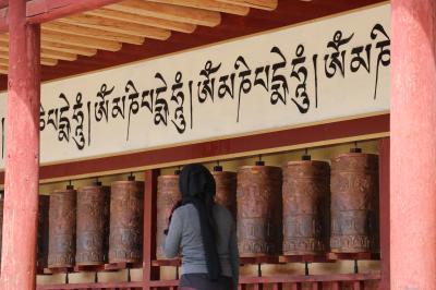 東チベット ゴロク・アバの旅(13)~ンガワ4 アムチョク・ツェンニ・ゴンパ(査理寺)、神座村、ガルチン・ゴンパ~