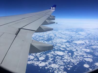 SASでヨーロッパ まずフランクフルト