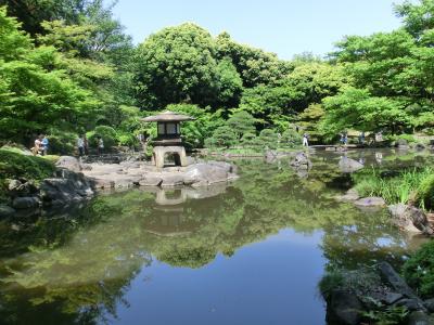 旧古河庭園♪春のバラフェスティバル~2018~