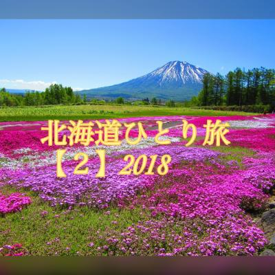 北海道ひとり旅☆行きは新日本海フェリーらべんだあ号・帰りはマイルでひとっ飛びでしょ【2】レンタカーで三島さんちの芝桜の丘と余市