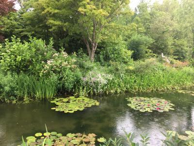 高知のモネの庭、ジヴェルニーの本物と比べてみたら?
