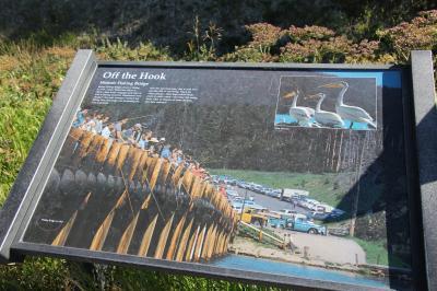 イェローストーン国立公園をドライブ! イエローストーン湖周辺