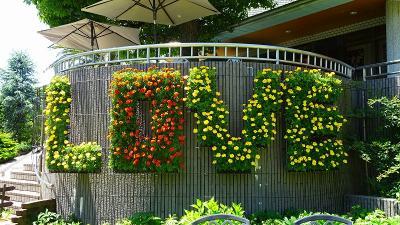 池田市 都市緑化植物園の見学 下巻。