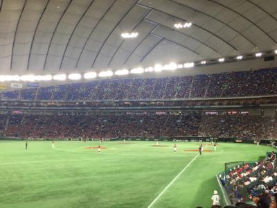 30年ぶりくらいに東京ドームでプロ野球を観戦しました!