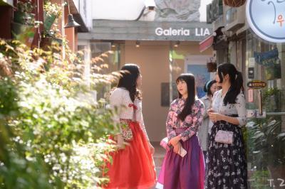 まだ終わらない春!昌原(チャンウォン)で楽しむ春のお出掛け