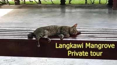 マレーシア旅行,ランカウイ アイランドホッピングツアー