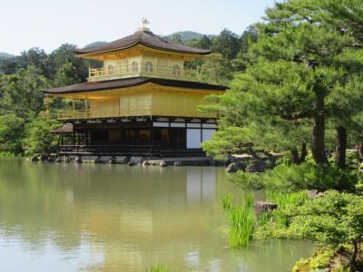 新緑の京都を訪ねて その3 北野天満宮・金閣寺