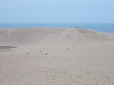鳥取砂丘に行ってみよう。