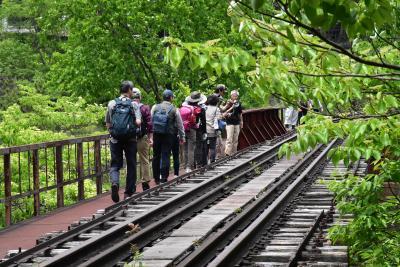 わたらせ渓谷鐵道「廃線跡を歩こう」~足尾銅山の面影が残る風景~(栃木群馬)