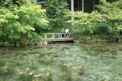 ちょっと岐阜までドライブ♪モネの池
