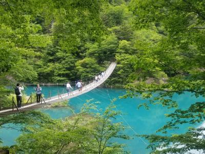 夢の吊橋&奥大井湖上駅。静岡のインスタ映えスポット×2に行ってみた!!
