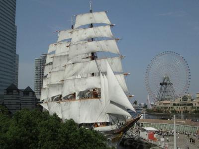 初夏の帆船日本丸・横浜みなと博物館見学と大桟橋~山下公園散歩