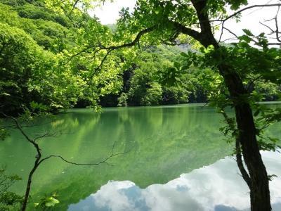 秋田県 どこかにマイル レンタカー 青池は青かった