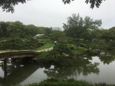 2018年5月 都立9庭園を廻る③ 清澄庭園