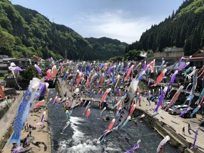 2018 MAY 子供の日に杖立温泉で毎年恒例となった鯉のぼり祭りに行く