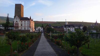 ドイツ大周遊(03) 早朝散歩・・・ホテル周辺の散策。