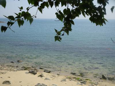 新居大島 日本一安いフェリー 大島一周サイクリング 人生の楽園「ジャックのパン屋さん」 瀬戸内海島めぐりファイルNO.7 インド洋の楽園ラ・ディーグ島か