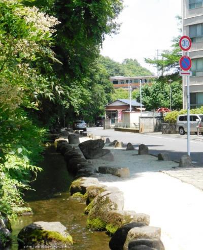水の生まれる街、日野・豊田を歩く
