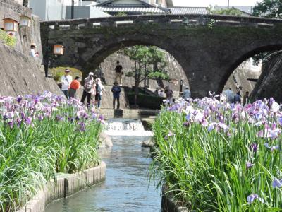 高瀬裏川「花しょうぶ」と玉名の歴史巡り