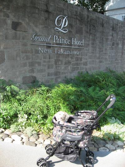新高輪プリンスホテルのドッグルームに泊まってみたよ