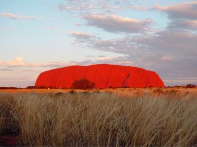 初上陸!オーストラリア大陸!   in  Uluru