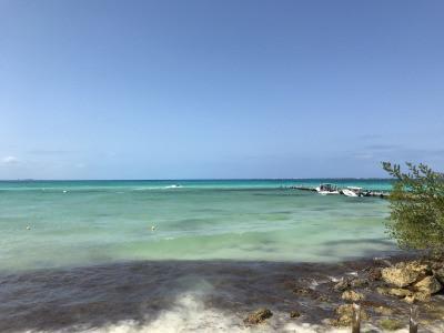 海洋保護地区でのダイビング