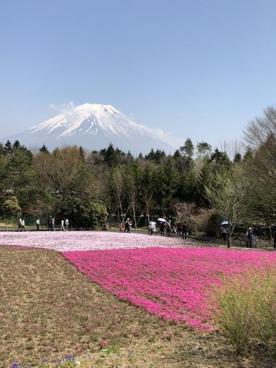 富士芝桜祭り&チャレンジ富士五湖ウルトラマラソン