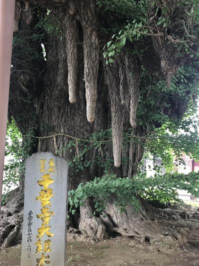 阪東三十三所札所めぐり(8)