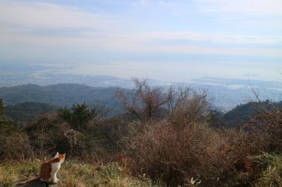 ルミナリエがみたくて神戸に行ってきた2泊3日 2日目は有馬温泉日帰り