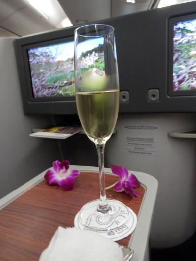 再び!UA特典航空券でクック諸島ラロトンガへ②TGタイ航空B787-8ビジネスクラスでバンコク⇒オークランド・オークランドでトランジットの1泊編