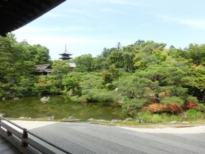 昔の仲間と、今年は奈良・京都その4:仁和寺。
