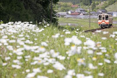 胸キュン♪ 鉄道風景を求めて・・・明知鉄道の旅