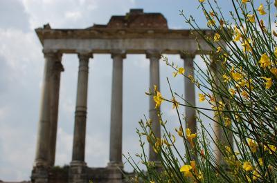 2011年GW/イタリアの旅 vol.2 ローマでミサンガ詐欺にあう